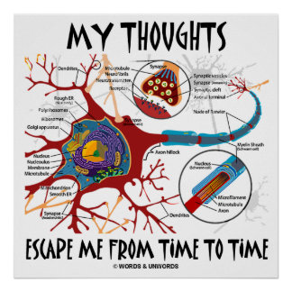 My Thoughts Escape Me From Time To Time (Neuron) Poster