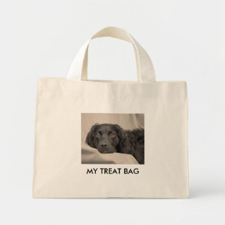 My Treat Bag