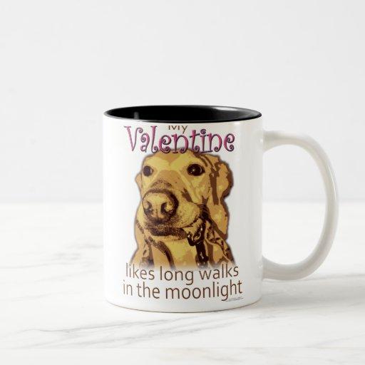 My Valentine Likes Long Walks - for dog lovers Mug