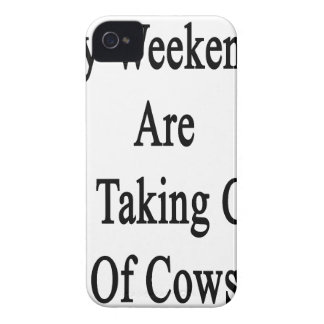 My Weekends Are For Taking Care Of Cows iPhone 4 Cover