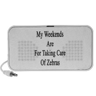 My Weekends Are For Taking Care Of Zebras Mini Speakers