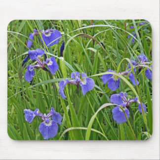 My Wild Iris Mouse Pad