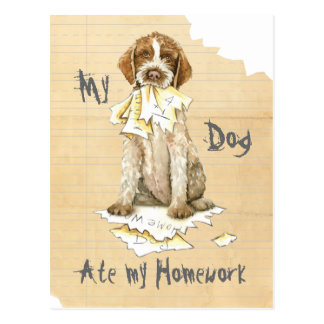 My Wirehaired Pointing Griffon Ate My Homework Postcard
