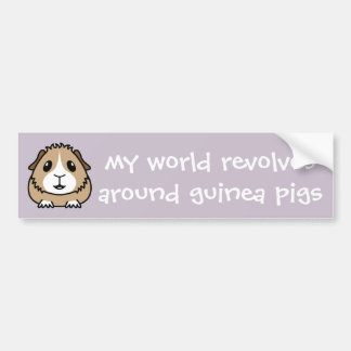 My World Revolves...Guinea Pig Bumper Sticker