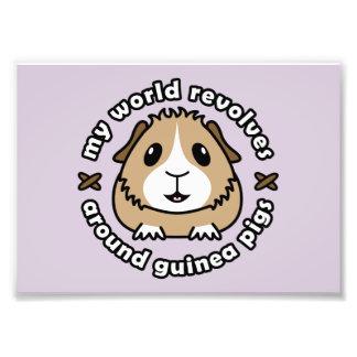 My World Revolves...Guinea Pig Print Photo