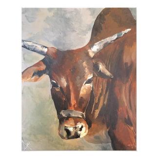 My Zebu Bull Print 20X16