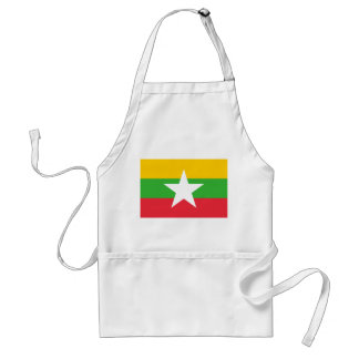 Myanmar National World Flag Standard Apron
