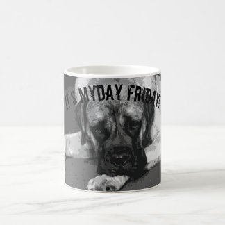 Myday Friday Mug