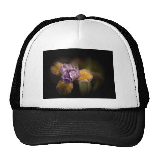 Mysterious Iris Cap