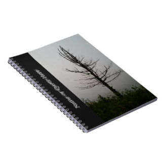 Mysterious Lone Tree Silhouette Notebooks