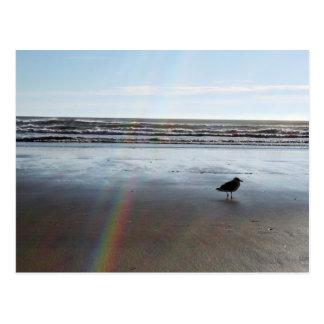 Mysterious Rainbow Postcard