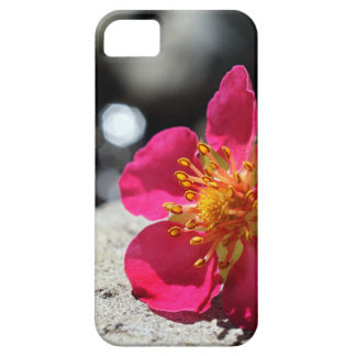 Mystery Pink Flower Case For The iPhone 5