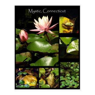 Mystic, Connecticut Postcard