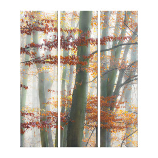 Mystic Foggy Forest Fall Scenic Nature Landscape - Canvas Print