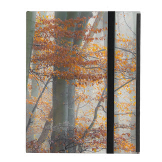 Mystic Foggy Forest in Autumn, protective hardcase iPad Cases