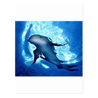 Mystical Dolphin.jpg Postcard