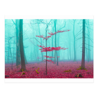 Mystical forest in red and turquoise postcard