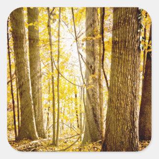 Mystical Forest Square Sticker