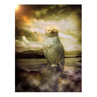 Mystical Magical Owl Artwork Postcard