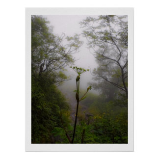 Mystical Morning at Appalachian Trail Poster