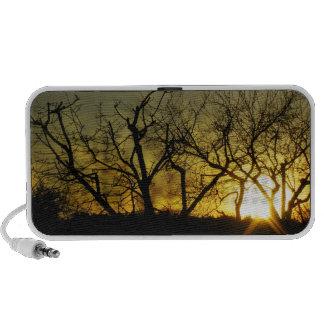 Mystical sundown travelling speakers