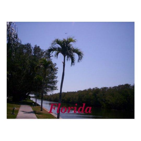 n92700683_30119323_5484,                       ... postcard
