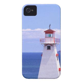 N.A. Canada, Prince Edward Island. Cape Tryon Blackberry Cases