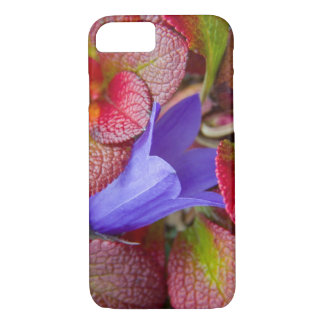 N.A., USA, Alaska.  Bluebell in the tundra in iPhone 7 Case