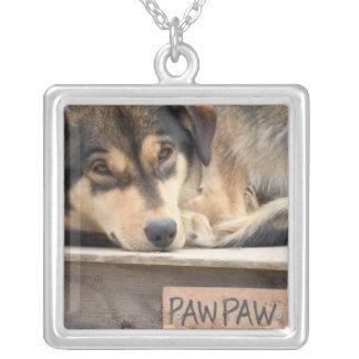 N.A., USA, Alaska. Husky sled dogs at 2 Square Pendant Necklace