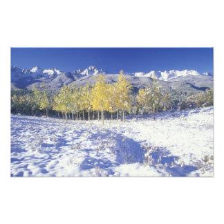 N.A., USA, Colorado, San Juan Mts Fresh snow Photo Print