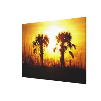 N.A., USA, South Carolina, Charleston. Sunset Canvas Prints