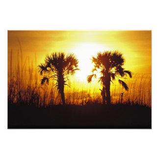 N.A., USA, South Carolina, Charleston. Sunset Photo