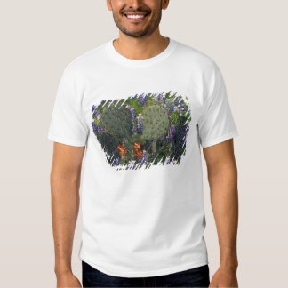 N.A., USA, Texas, Cactus surrounded by T-shirts