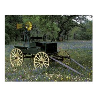 N.A., USA, Texas, Devine, Old wagon and Postcard