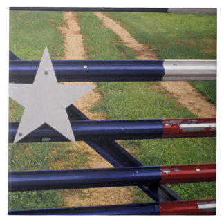 N.A., USA, Texas, Lake Buchanan, Texas flag Tile