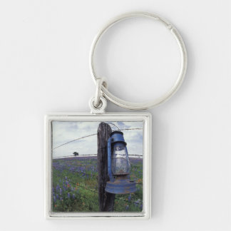 N.A., USA, Texas, Llano, Blue Lantern, Oak tree Silver-Colored Square Key Ring