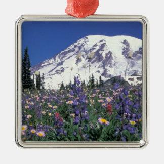 N.A., USA, Washington Mt. Rainier and Metal Ornament