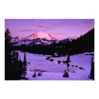 N.A., USA, Washington, Mt. Rainier National 2 Photo Print