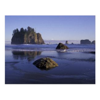 N.A., USA, Washington, Olympic National Park, 3 Postcard