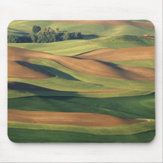 N.A., USA, Washington, Whitman County. Mouse Pad