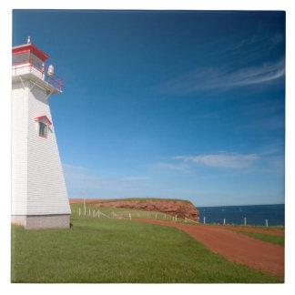 NA, Canada, Prince Edward Island. Cape Tryon Large Square Tile