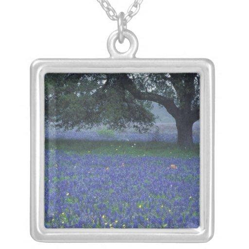 NA, Texas, Devine, Oak and blue bonnets Necklaces