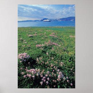 NA, USA, Alaska, Aleutian Island, Scenic with Poster