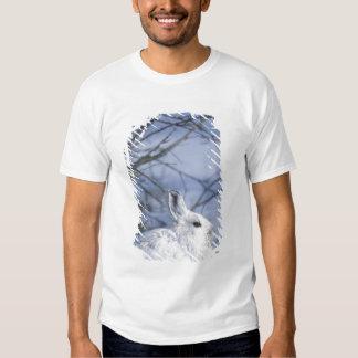 NA, USA, Alaska. Arctic National Wildlife Shirts