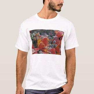 NA, USA, Alaska, Denali NP Frosted, fall-colored T-Shirt