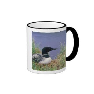 NA, USA, Alaska, Denali NP, Wonder Lake, 2 Ringer Mug