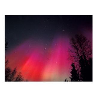 NA, USA, Alaska, Fairbanks, Curtains of pink and Postcard