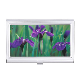 NA, USA, Alaska, Knight Island, Wild iris Business Card Holder