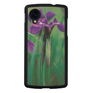 NA, USA, Alaska, Knight Island, Wild iris Carved® Maple Nexus 5 Slim Case