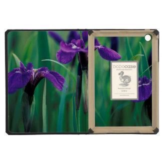 NA, USA, Alaska, Knight Island, Wild iris iPad Mini Retina Covers